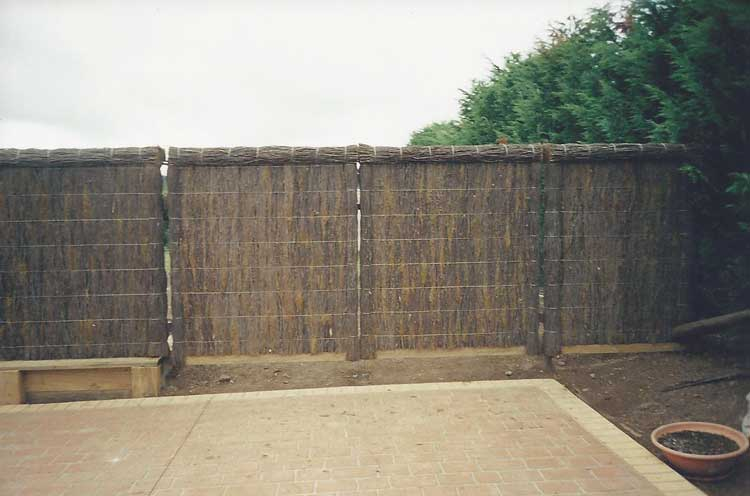 brushfence-and-backyard