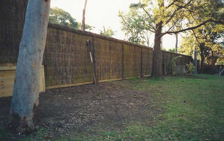 brushwood-fencing-and-tree