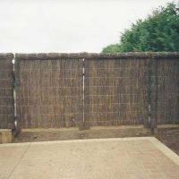 brushfence-and-backyard