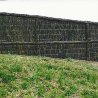 brushwood-fence-and-grass