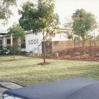brushwood-fencing-street-view