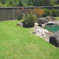 pool-and-brushwood-fencing